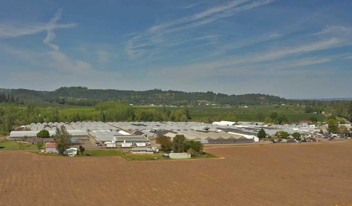 Contract Hemp Farm Property at iHEMPx