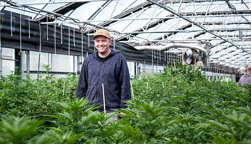 Mike Leago from iHEMPx inside a greenhouse resized