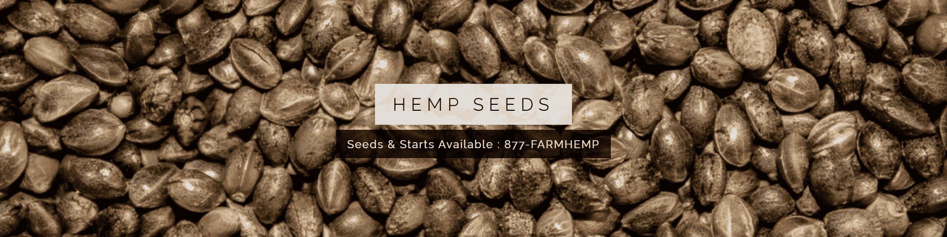 Hemp Seeds Banner for iHEMPx